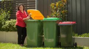Halve Waste – delivering real diversion from landfill