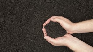Composting massively reduces greenhouse gas emissions compared to landfill