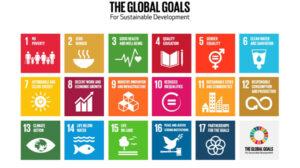 UN Sustainable Development Goal 12 – aspirational or achievable?